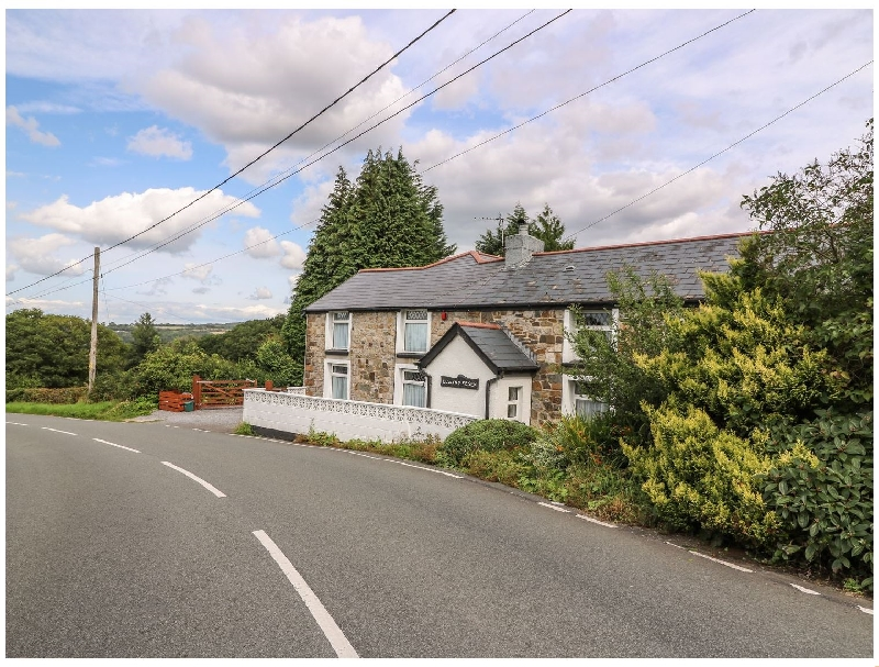 Click here for more about Llwynyfesen