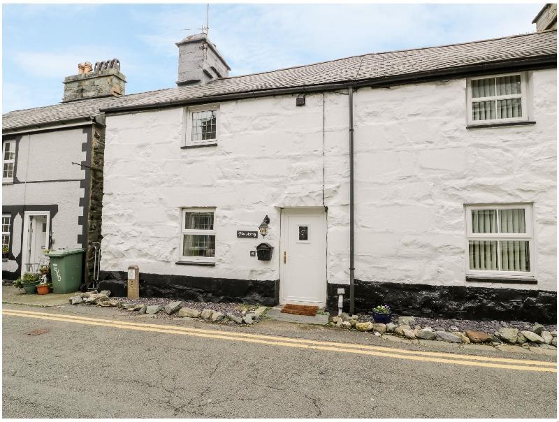 Welsh holiday cottages - Plas Arenig